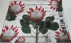 HW LONG STEM PROTEA- WATERP PM