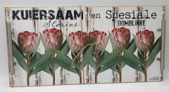 ROBYN PROTEA - KUIERSAAM STORES - WOOD TRUN 250X500