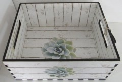 SUCCULANT CRATE - STOARAGE
